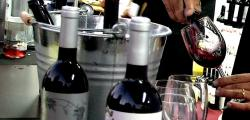 Best wines of the Costa Dorada for 12 euros to Reus Viu el Vi 2013