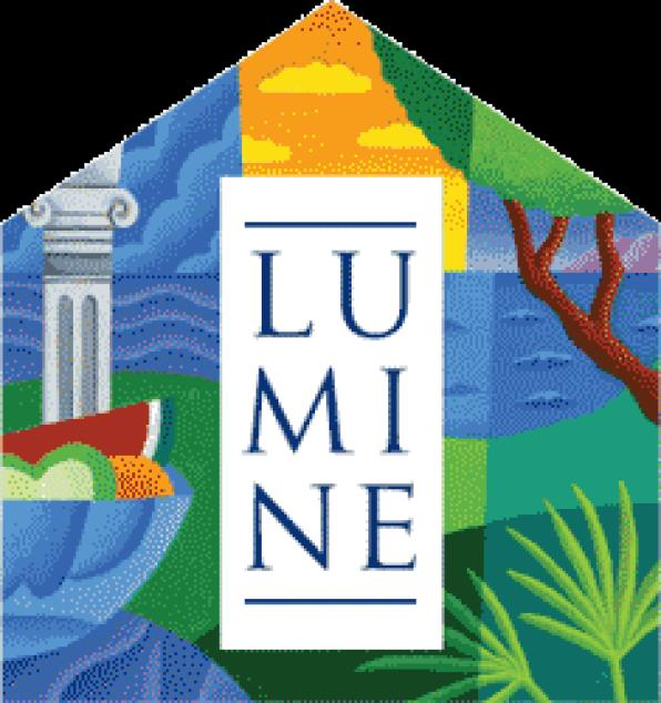 Lumine established partnerships with different groups of Tarragona