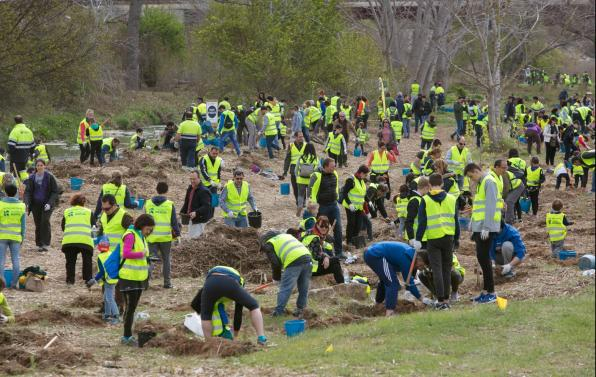 The 800 participants planted 1,400 bushes of six species.