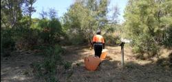 Cleaning in the wooded area of ​​Cap de Salou