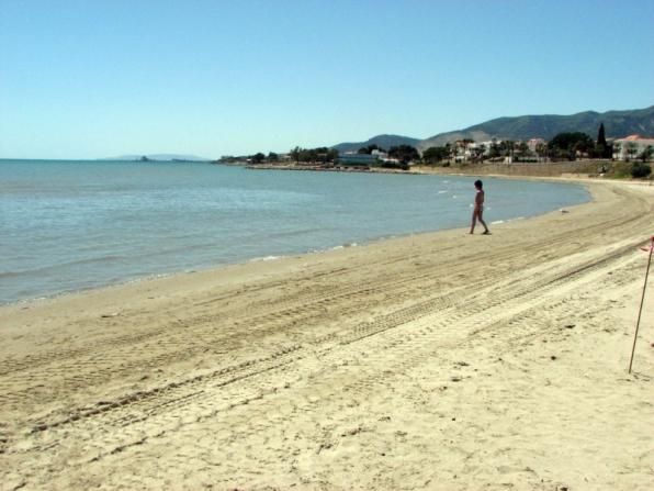 Beaches and ports in the Costa Dorada and the Ebro look 46 Blue Flags this summer