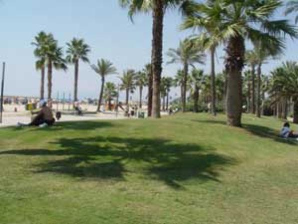 Salou saves potable water system to irrigate their gardens with groundwater