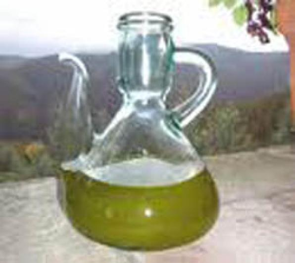 Feast of the new Olive oil Morell this December 13