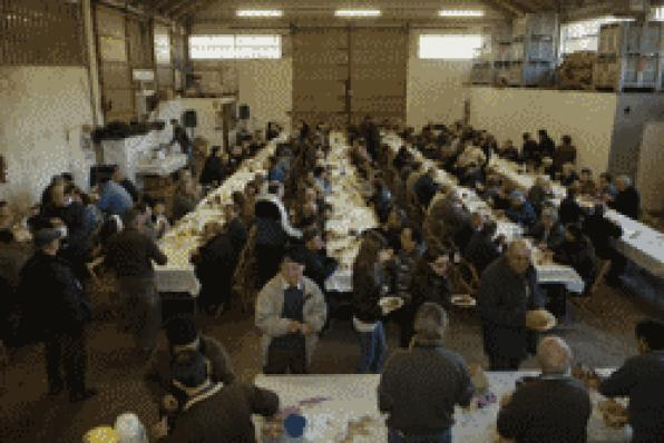 Over 350 people celebrated the eighth edition of the Feast of the Olive Vandellòs